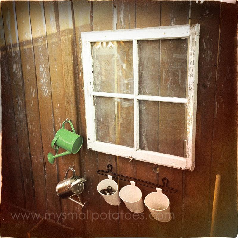 windowandpots
